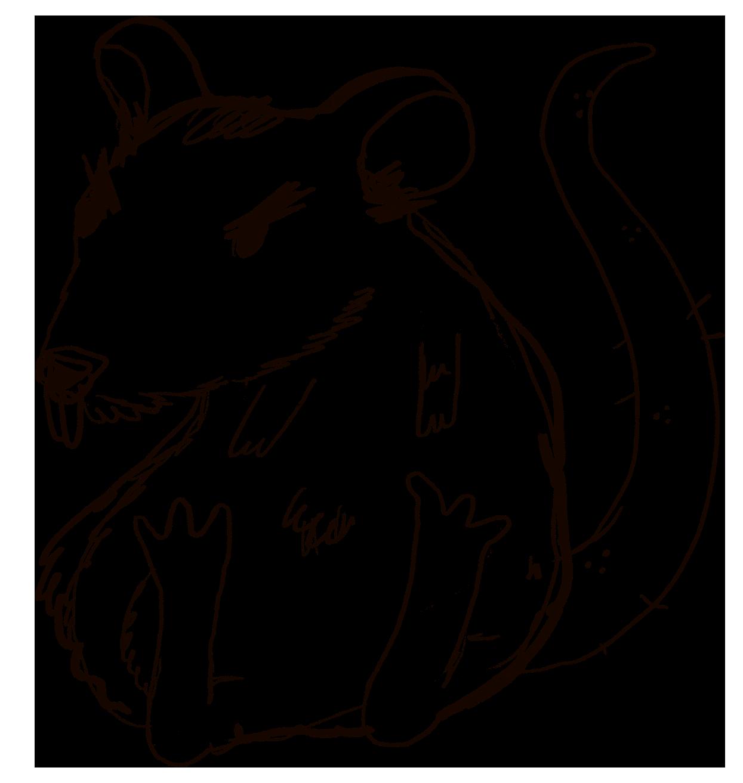 rata fea y enfadada